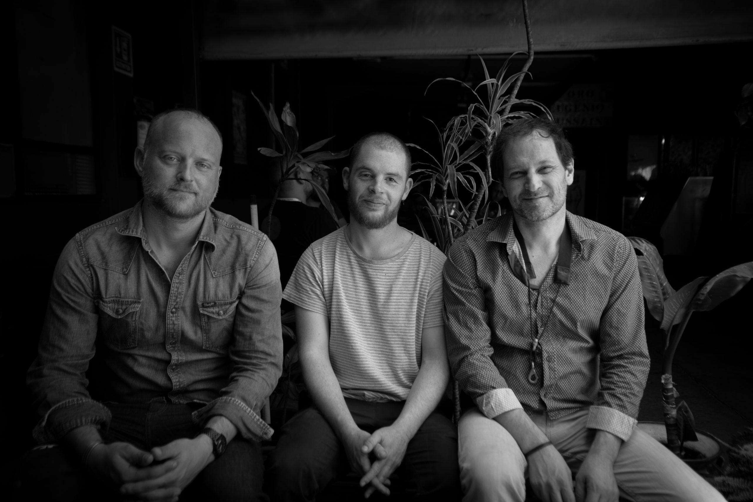 Frederic Borey BUTTERFLIES Trio